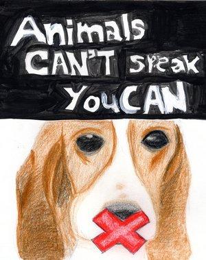 Παγκόσμια Ημέρα Συμπαράστασης για τα Ζώα