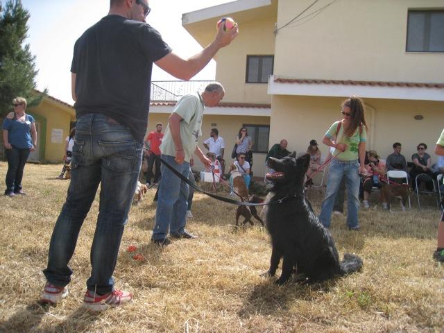 Με επιτυχία η Ημέρα Σκύλου!