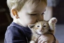 Γάτα και παιδί