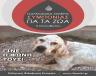 Παγκόσμια Ημέρα Συμπόνιας για τα ζώα