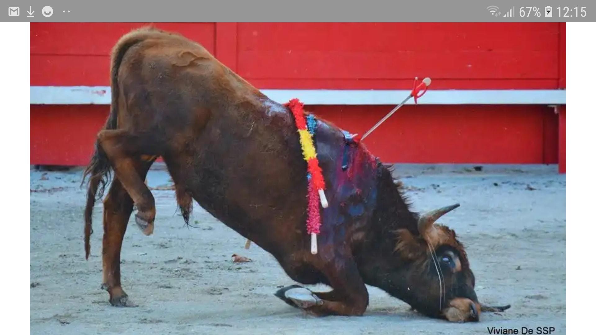 Η φρίκη στην Ισπανία συνεχίζεται